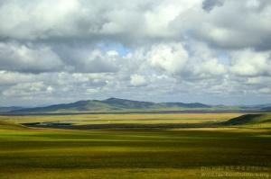 High-plateau-grazing-cattle_t_c0_30_sr30_hsy3_30_sg30_hc10_w5